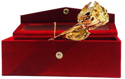 INTERNATIONAL GIFT 24k Gold Plated Natural Rose with Velvet Box Packing (15 cm, Gold) $ IG103
