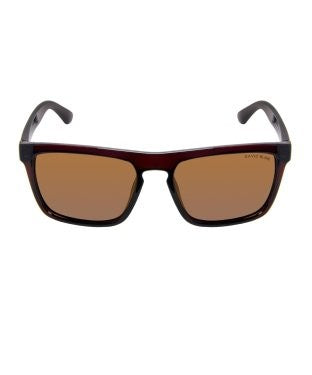 David Blake Brown Wayfarer Polarised Sunglass