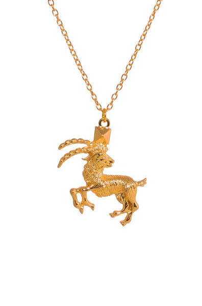 Capricorn Zodiac Necklace - JGEPNEC9711