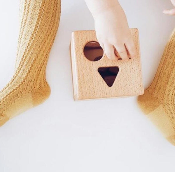 Shape Sorter (ON SALE)