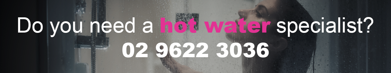 Hot Water Nurse Sydney New Hot Water Systems Repair Installations Rheem Dux Rinnai Bosch AquaMax Vulcan