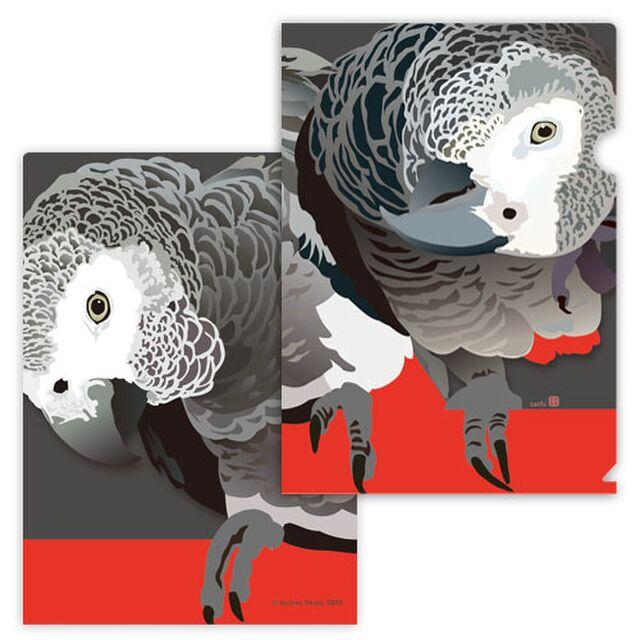 A4 File Folder Organizer African Gray Parrot - Boutique SWEET BIRDIE