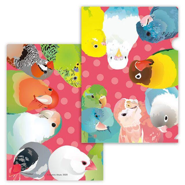 A4 File Folder Organizer Zebra Finch Budgie Budgerigar Parakeet Pacific Parrotlet  Lovebird Bourke's Parakeet Java Sparrow - Boutique SWEET BIRDIE