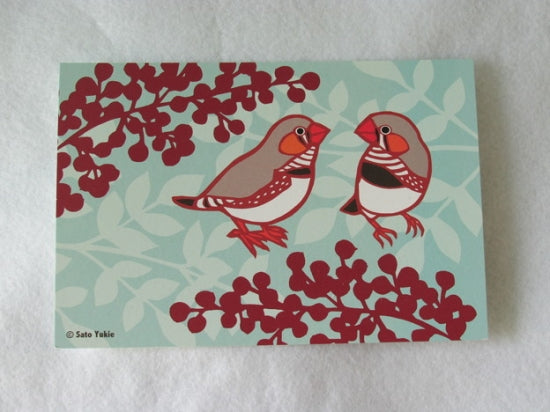 Zebra Finch Postcard Yukie-50 - Boutique SWEET BIRDIE