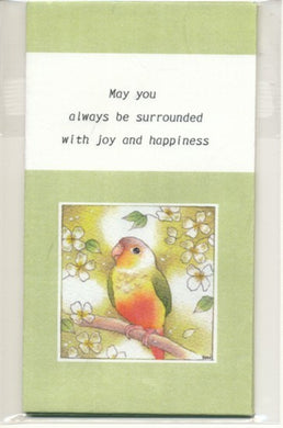 Sets of 3 Green-Cheeked Parakeet Conure Mini Envelopes Emi-890 - Boutique SWEET BIRDIE