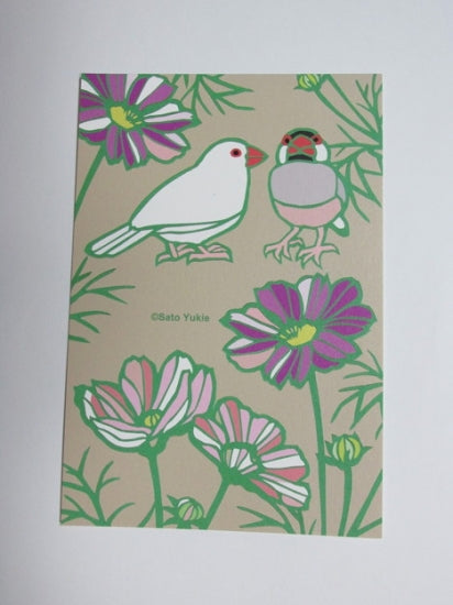 Java Sparrow Postcard Yukie-53