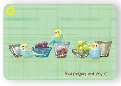 Budgie Budgerigar Parakeet Pass Holder