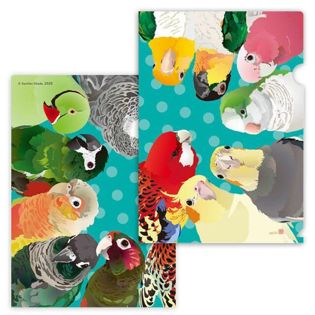 A4 File Folder Indian Rose-necked Parakeet African Gray Parrot, White-bellied Caique Black-headed Caique Galah Monk Parakeet Cockatiel Lorikeet Green-cheeked Parakeet Conure Macaw - Boutique SWEET BIRDIE