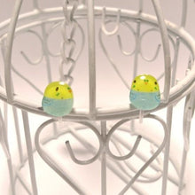 Budgie Budgerigar Parakeet Invisible Clip On Non Pierced Earrings - Boutique SWEET BIRDIE