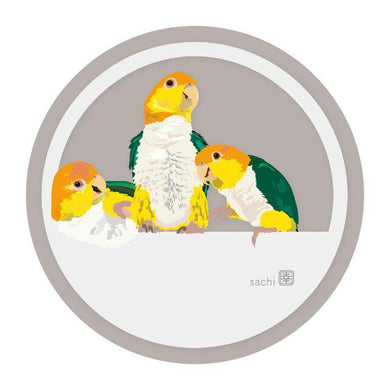 White-Bellied Caique Coaster