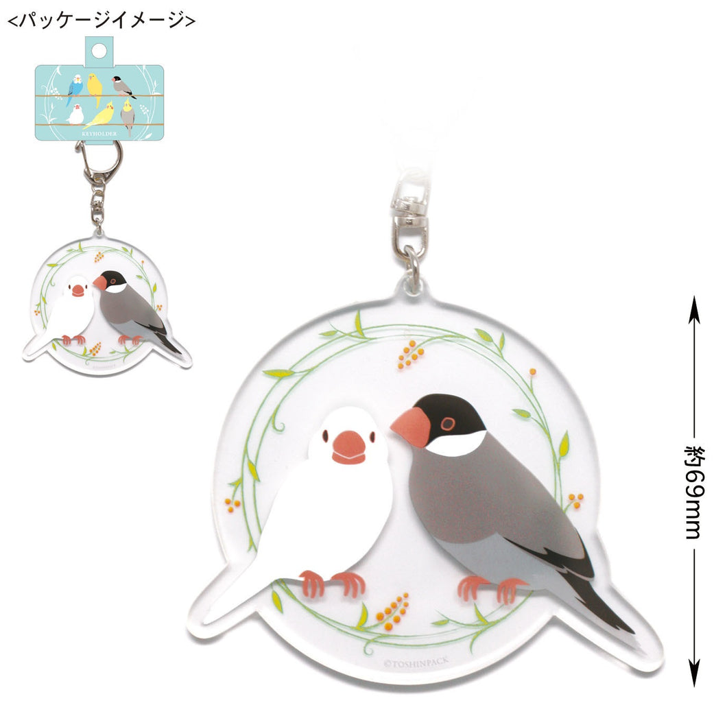 Java Sparrow Acrylic Key Holder - Boutique Sweet Birdie