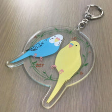 Budgie Budgerigar Parakeet Acrylic Key Holder