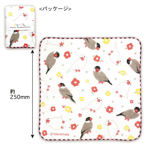 Java Sparrow Gauze Handkerchief