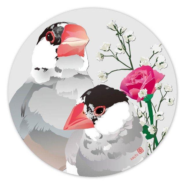 Java Sparrow Coaster