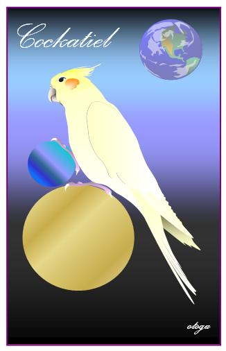 Cockatiel Postcard otoga3 - Boutique SWEET BIRDIE