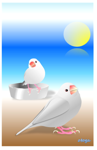 Java Sparrow Postcard otoga21 - Boutique Sweet Birdie