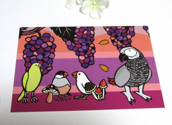African Gray Parrot Java Sparrow Canary Postcard Yukie-38 - Boutique SWEET BIRDIE