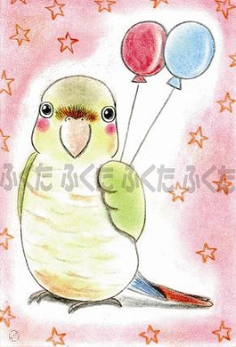 Green-cheeked Parakeet Postcard Fukuta-59 - Boutique SWEET BIRDIE