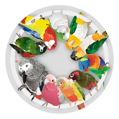 Bird Coaster African Gray Parrot White-Bellied Caique Black-Headed Caique Galah Monk Parakeet Lorikeet Conure Macaw