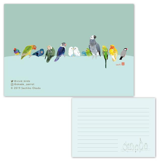 Memo Pad Gouldian Finch Lovebird Budgerigar Pacific Parrotlet African Gray Parrot Java Sparrow - Boutique SWEET BIRDIE