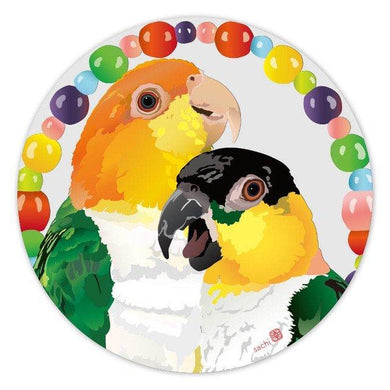 White-Bellied Caique & Black-Headed Caique Coaster