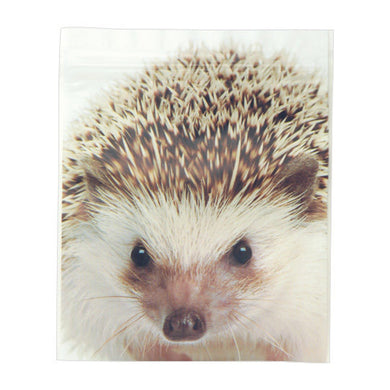 Sets of 5 Hedgehog Ziplock Bags