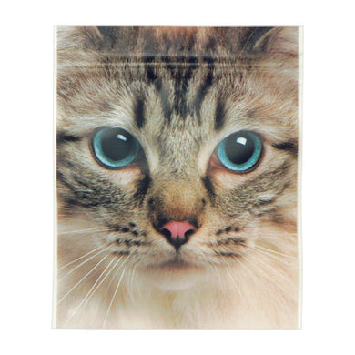 Sets of 5 Cat Ziplock Bags