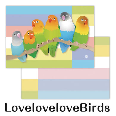 Creative Motion Lovebird Memo Pad - Boutique SWEET BIRDIE