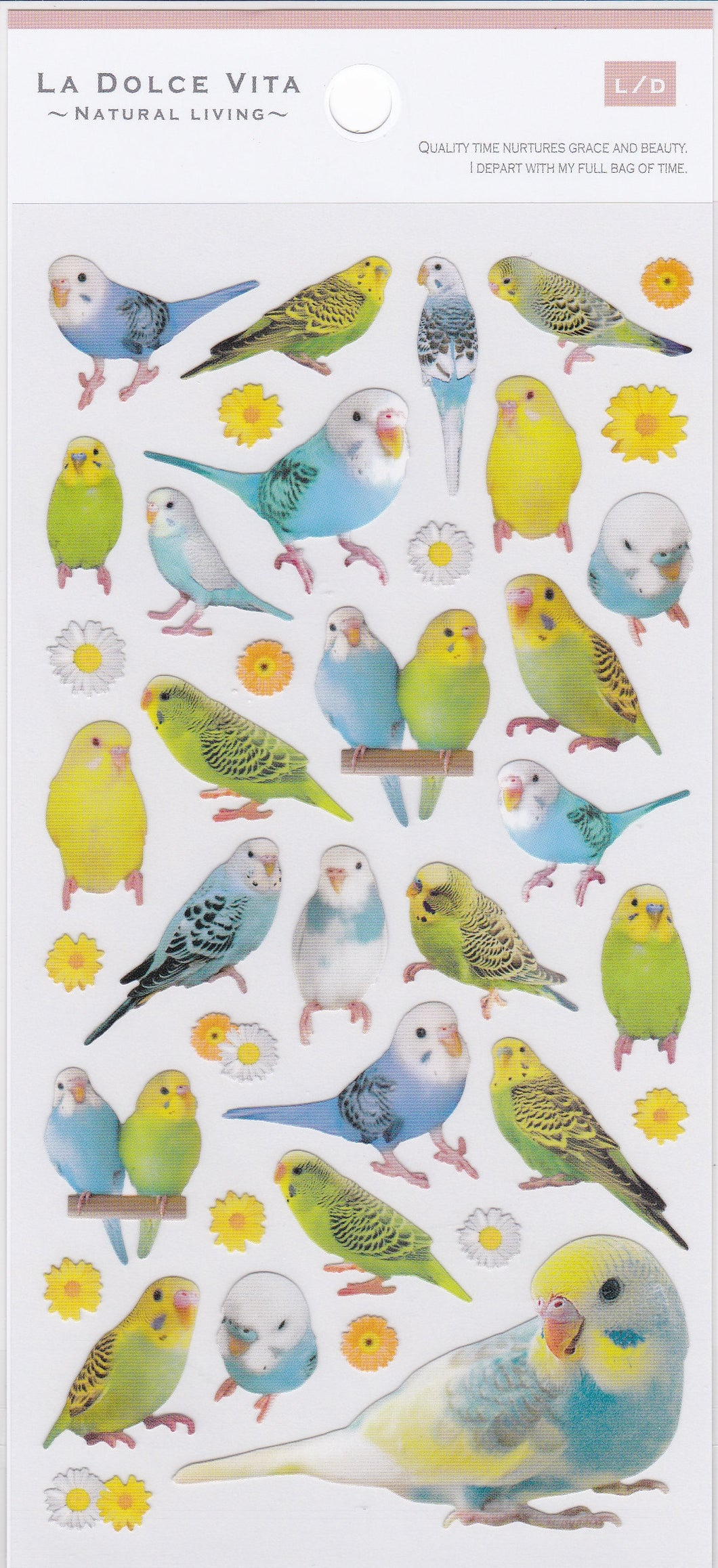 Budgie Budgerigar Parakeet Stickers   10996 - Boutique SWEET BIRDIE