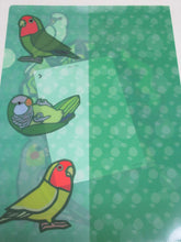 A4 File Folder  Organizer Java Sparrow, Budgie Budgerigar Parakeet Cockatiel Monk Parakeet, Lovebird (yukie-903) - Boutique SWEET BIRDIE