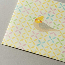 Sets of 3 Bird Mini Envelopes Square Cockatiel Budgie Budgerigar Parakeet 1359001 - Boutique SWEET BIRDIE