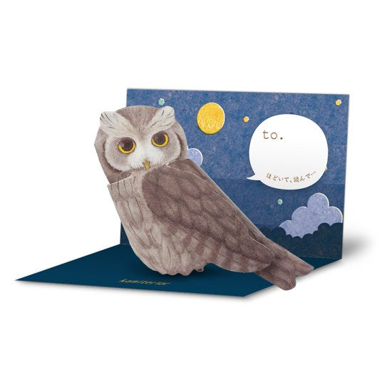 Sets of 10 Owl Bird 3D Greeting Card Paper Craft Mini Letter