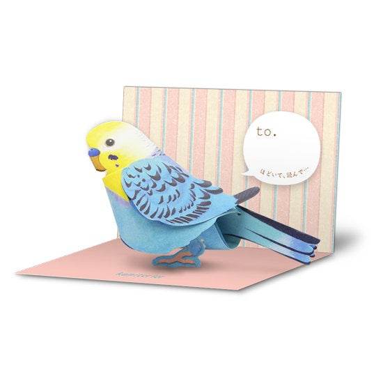 Sets of 10 Budgie Budgerigar  Parakeet  Bird 3D Greeting Card Paper Craft Mini Letter - Boutique Sweet Birdie