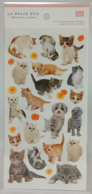 Cat Stickers - Boutique SWEET BIRDIE