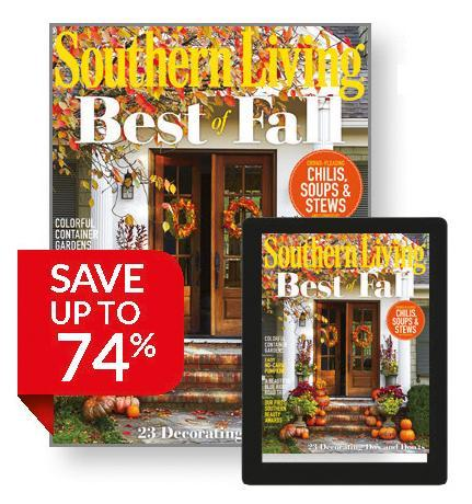 SOUTHERN LIVING 13  issues
