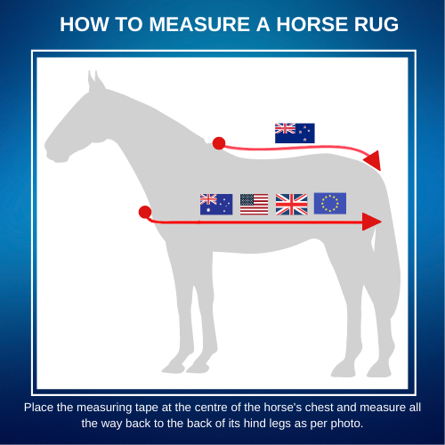 how-to-measure-a-horse-rug