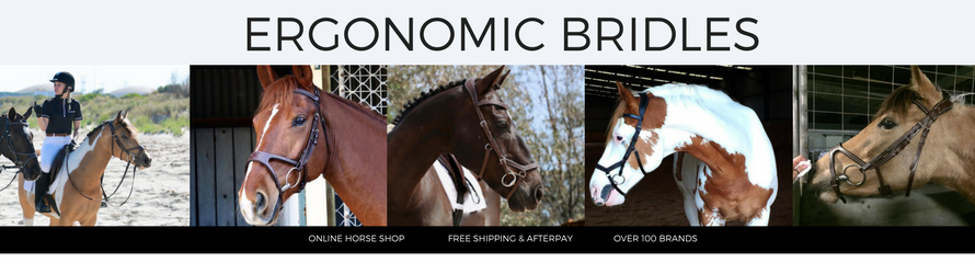 ergonomic-bridle