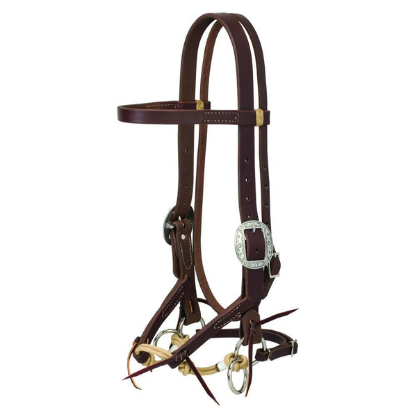 bitless-bridle-reviews