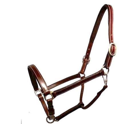 Leather Halter-Champion