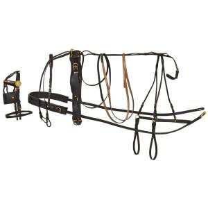 Horse Harness-STC
