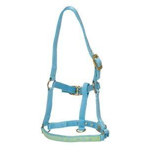 "Rancher ""Super Star"" Foal Halter-Rancher"