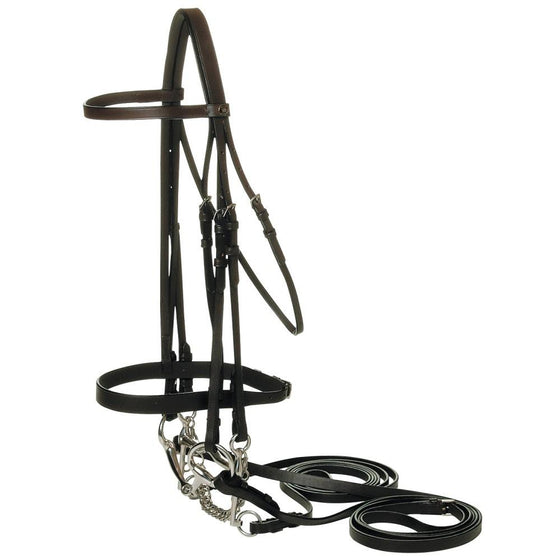 Hunter Double Bridle-Jeremy & Lord