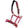 Ergonomic Neoprene Lined Halter-Rancher