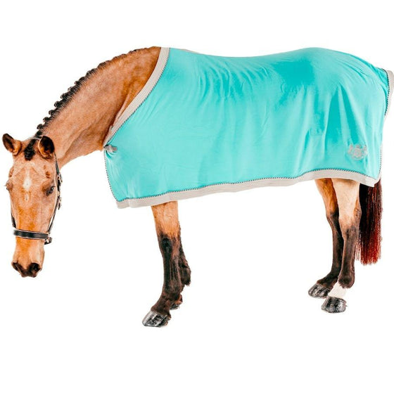 Royalty Fleece Rug - Teal