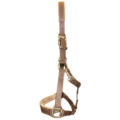 "Tekna 1"" Buckle Halter w/Fleece - Brown-tekna"