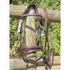 Champion Diamonte Padded Crank Bridle with Shaped Head Piece-Ascot Equestrian