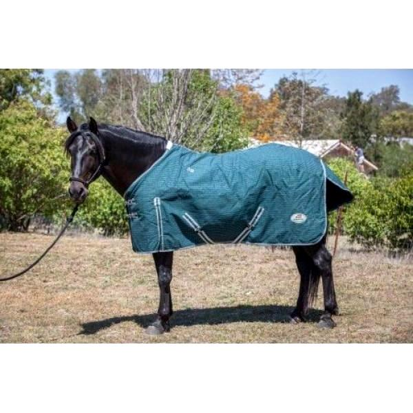Canvas Horse Rug - Unlined