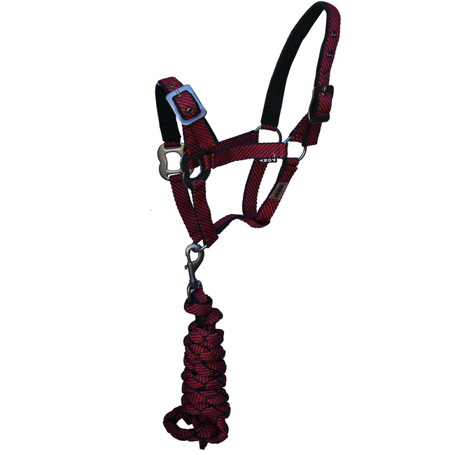 Red Halter with Lead