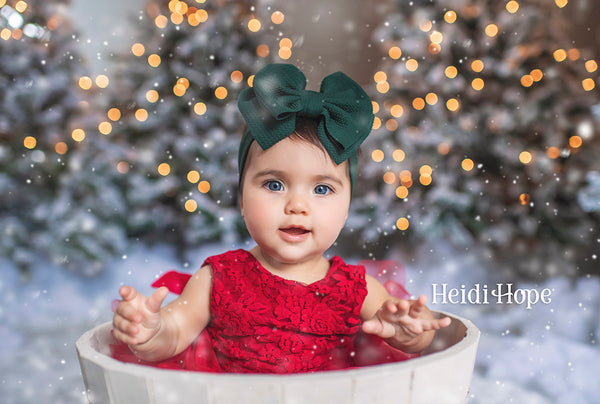 LiveStream Holiday Photography Workshop |  Replay December 2020