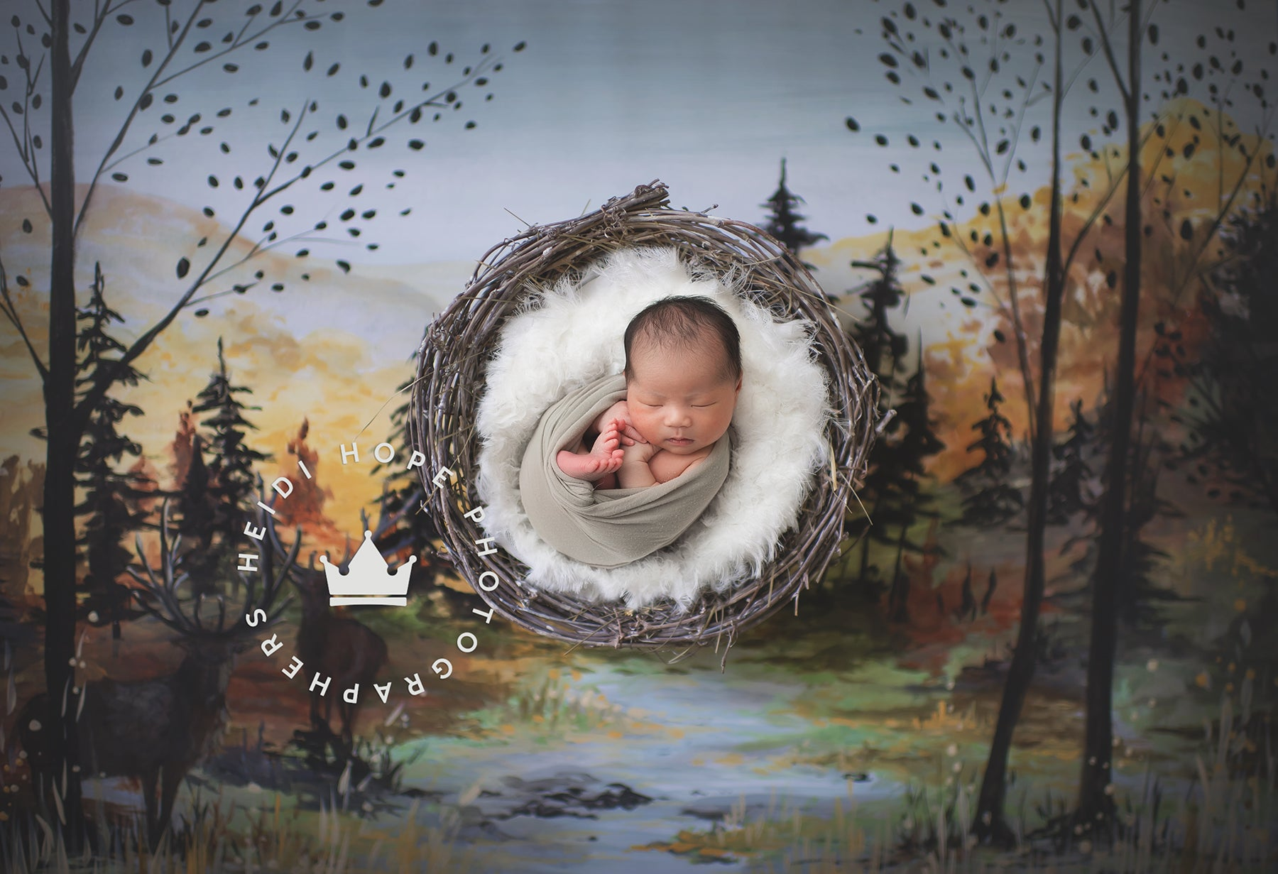 AOFOTO 3x5ft Baby Photography Studio Backdrops Toddler Photo Shoot Background Dreamy Forest Squirrel Tree Leaves Plants Grass Path Child Infant Kid Artistic Portrait Fantasy Scene Video Props Digital